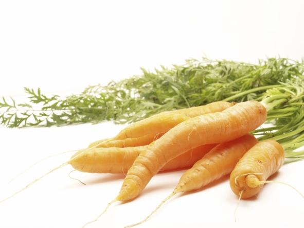istock_carrots