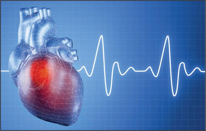heart_graph