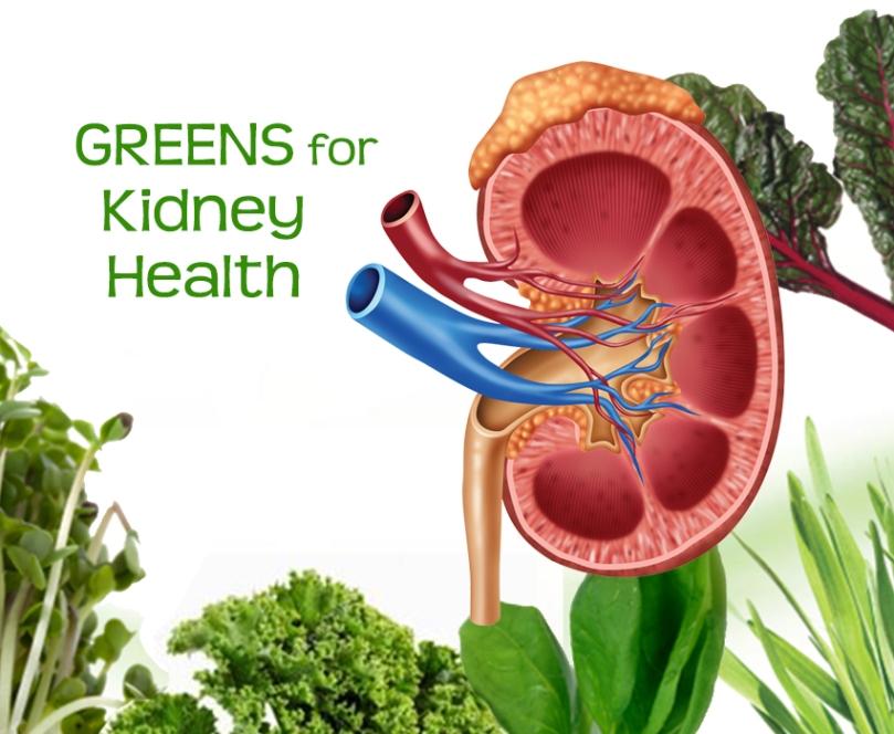 Greens-Kidney-Health