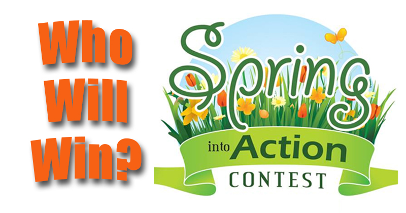 Spring Into Action Contest Leaderboard
