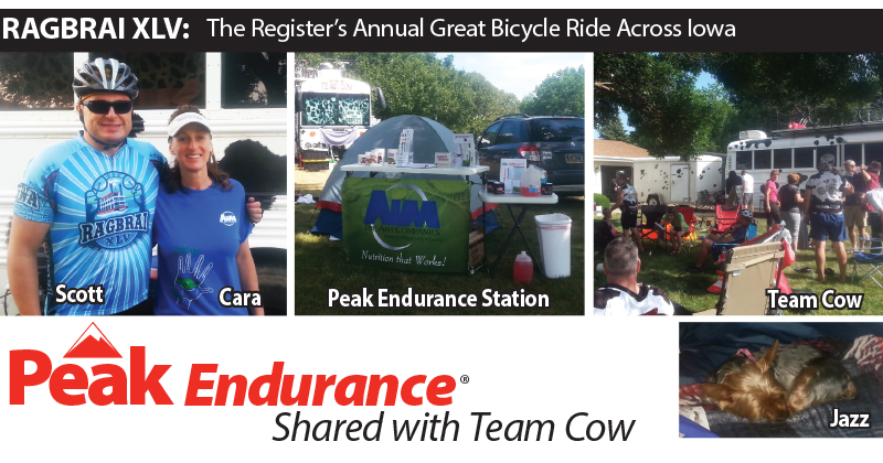 Peak Endurance Shared with Team Cow