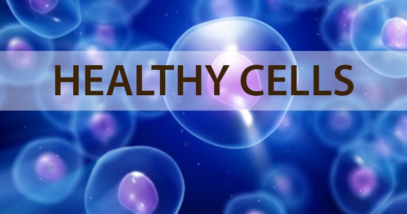Healthy Cells