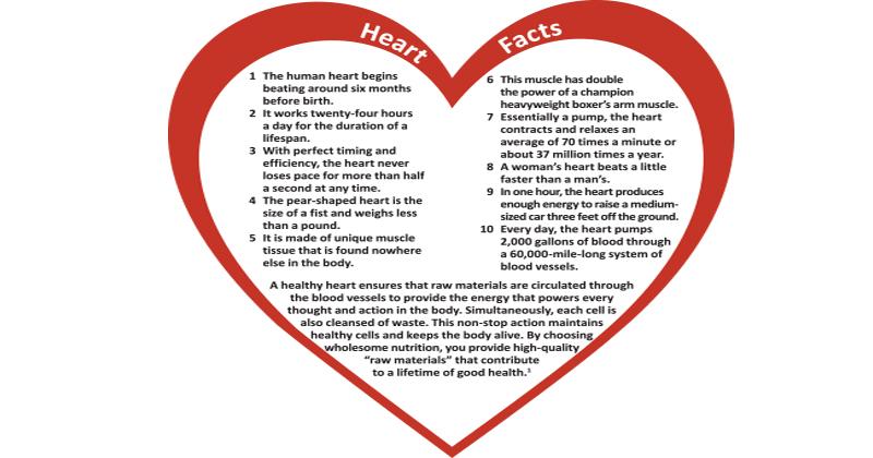 HeartFactsChart