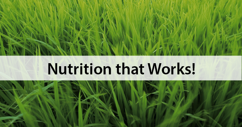 Nutrition that Works!