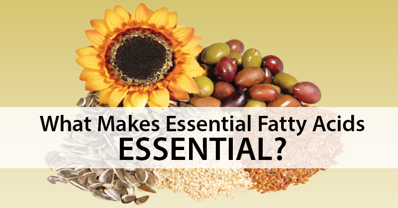 What Makes Essential Fatty Acids ESSENTIAL?