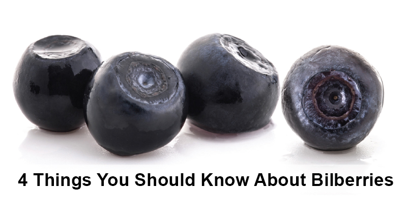 4 Things You Should Know About Bilberries