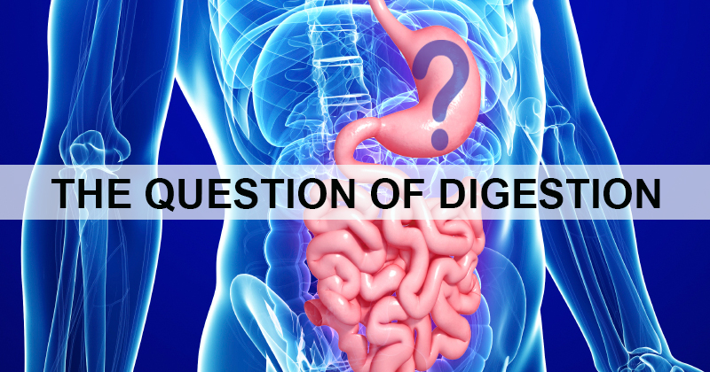 The Question of Digestion