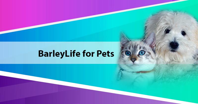 BarleyLife for Pets